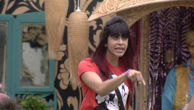 Bigg Boss 9 Episode 17