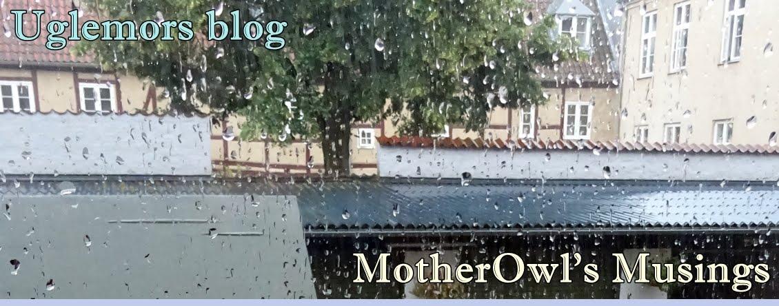 Uglemors blog -- MotherOwl
