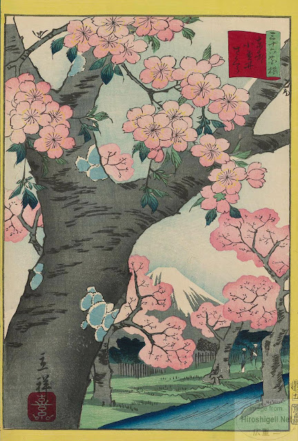 Cherry Blossom Classic Dog Show