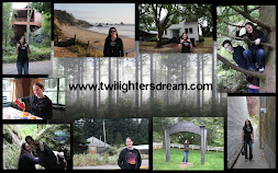 CONTACT ME - lisa@twilightersdream.com