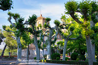 Bocal Visita por el Moncayo Ribera del Ebro Canal Imperial de Aragon