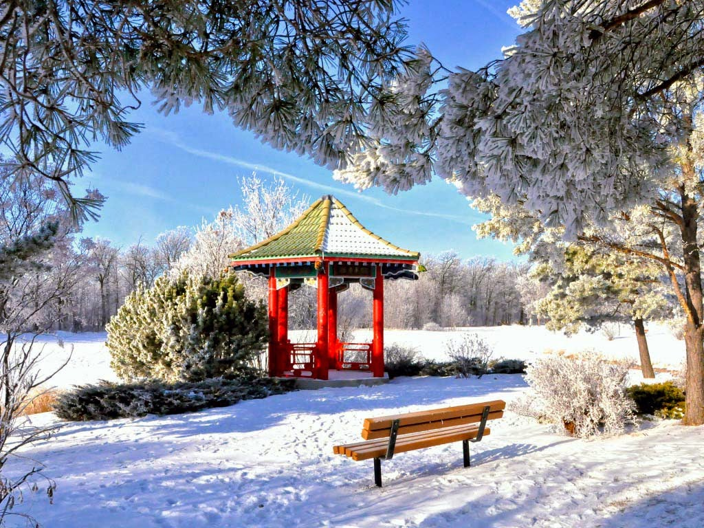winter-nice-image