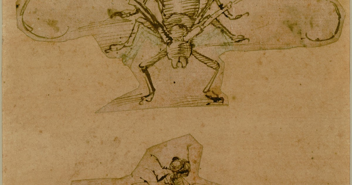 Contour Line Drawing Leonardo Da Vinci : Artwithhillary hand to mind drawing know