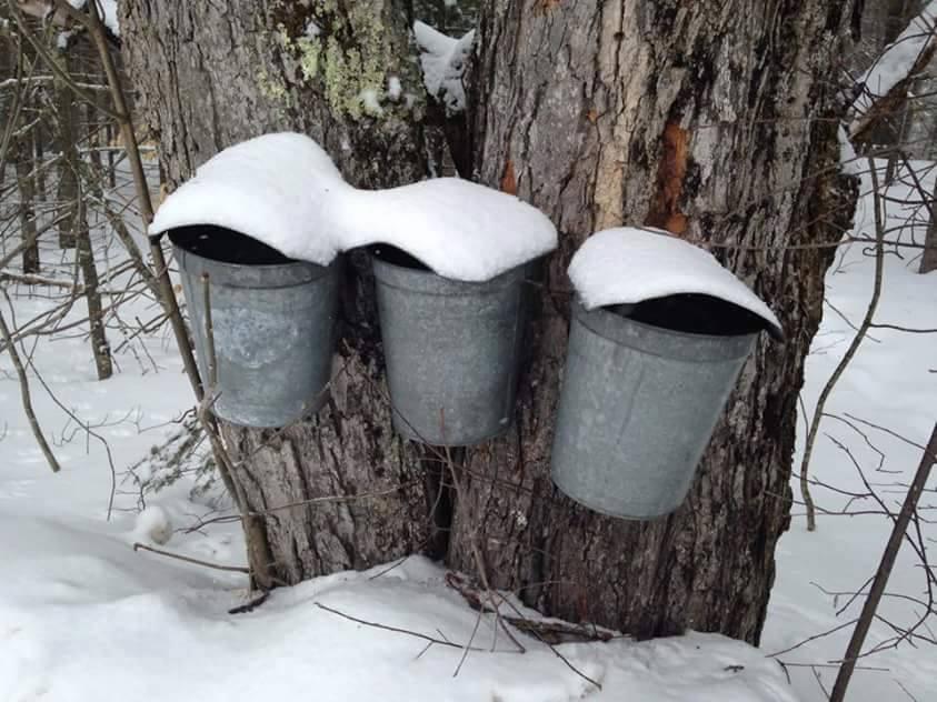 Life in Vermont