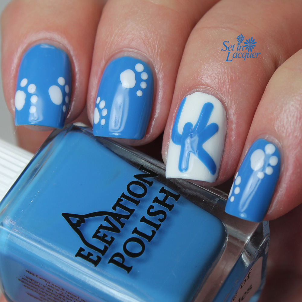UK - University of Kentucky Wildcats nail art