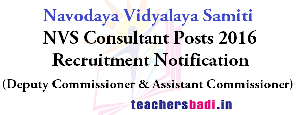 NVS Consultants,Recruitment Notification,Navodaya Vidyalaya Samiti