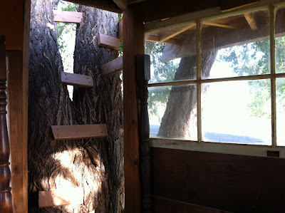 Colorado tree house www.thebrighterwriter.blogspot.com