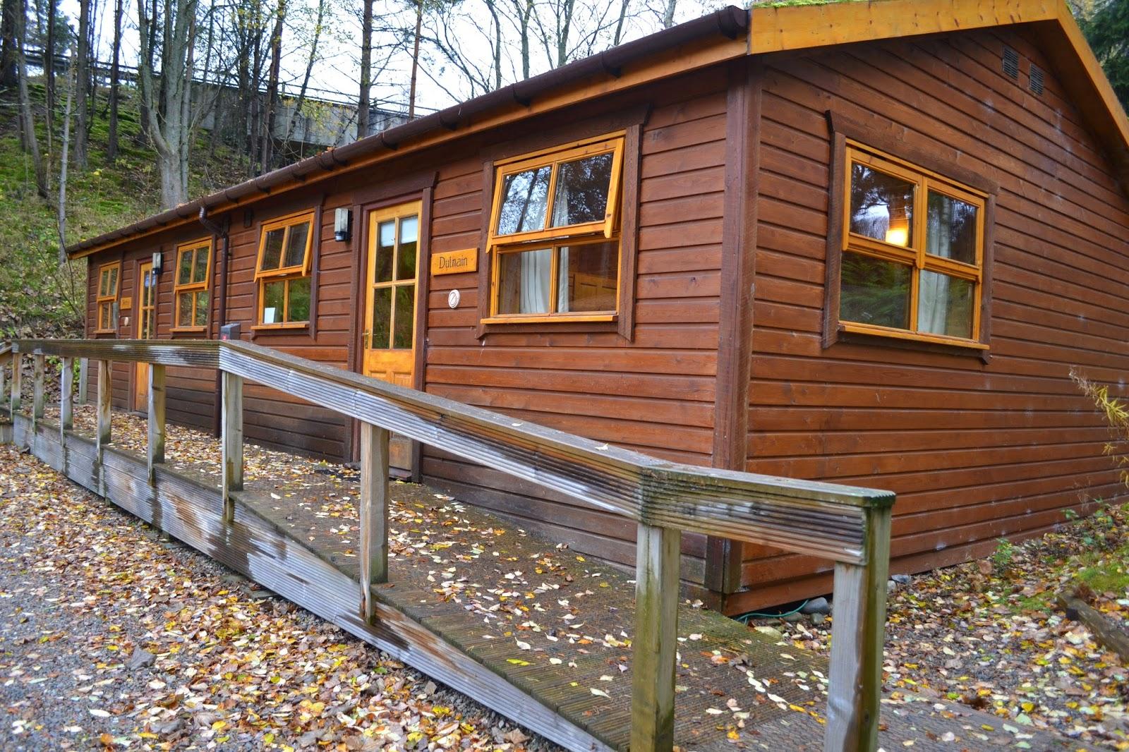 Siberian larch cabin