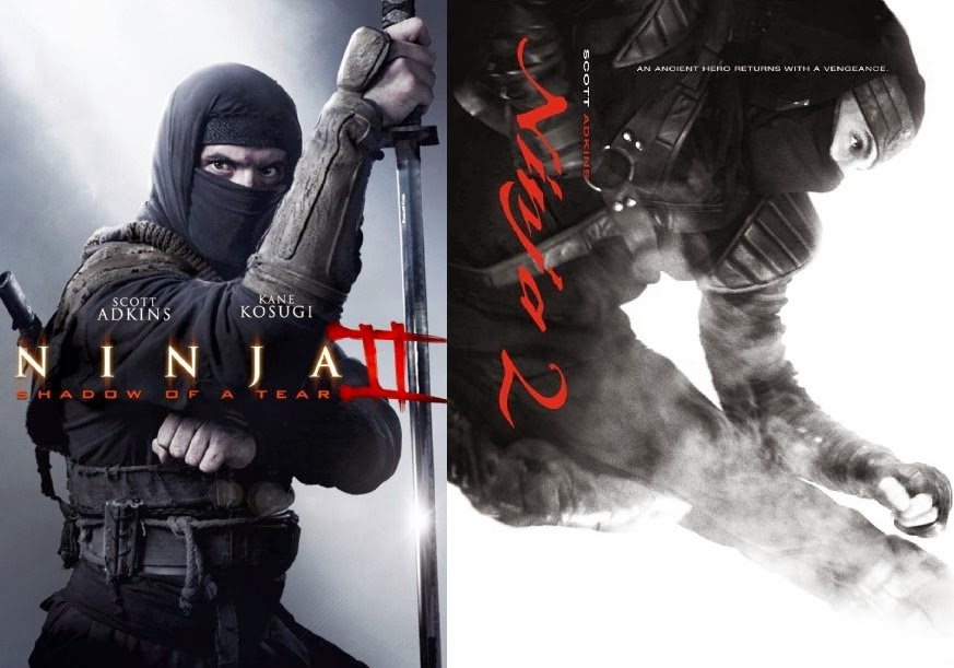 Film Ninja: Shadow of a Tear (2013)