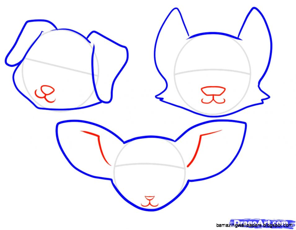 how to draw anime animals step by step