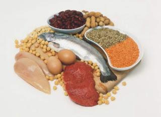 Sumber Protein dan Fungsi Protein Bagi Tubuh