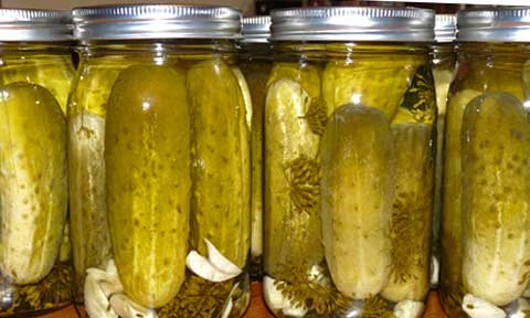 Beast's Kitchen: Dill Pickles