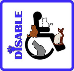 Disable Friendly