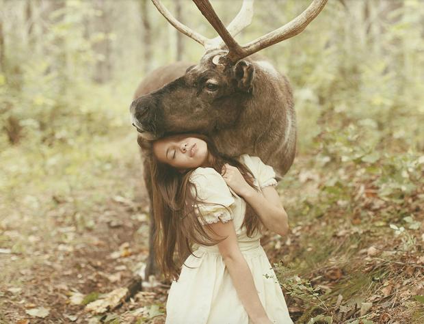 Increíble serie de fotografías con animales salvajes