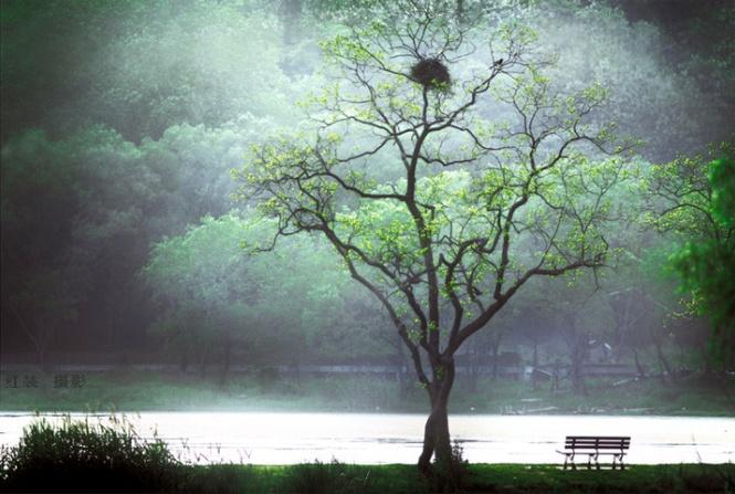 美梦变成空,非常成如音梦中 (měi mèng biàn chéng kōng, fēi cháng chéng rú yīn mèng zhōng)。- Beautiful dream becomes empty, just like only a musical dream.