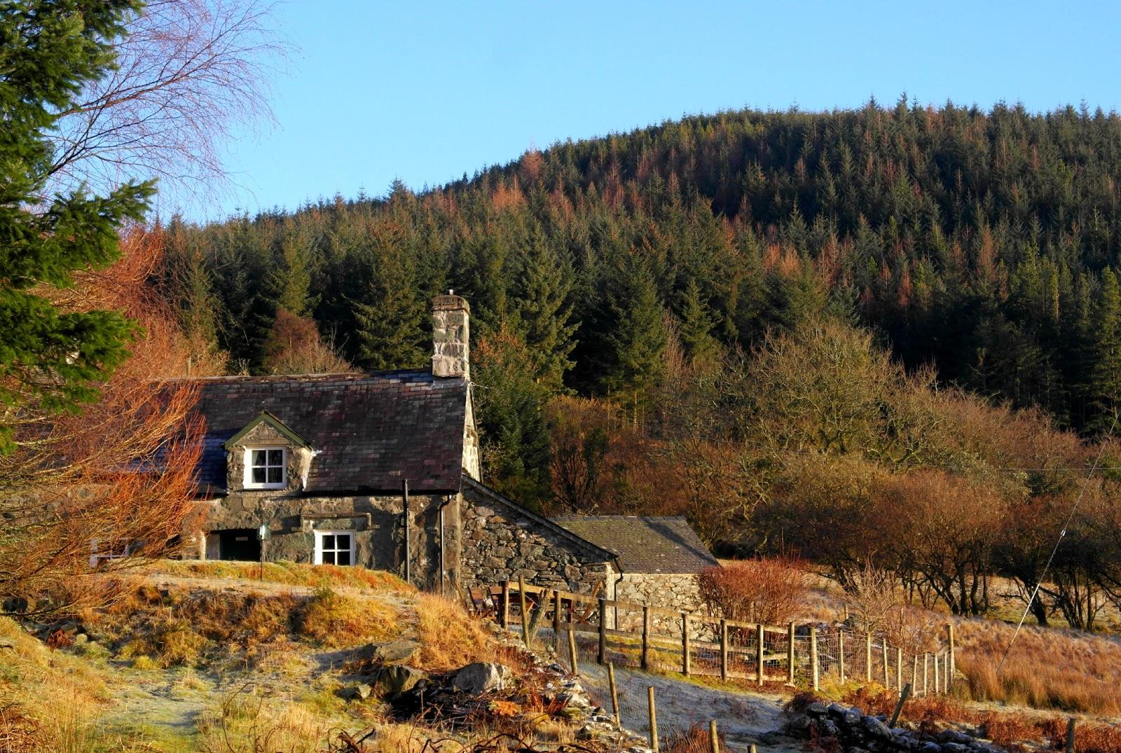 Tyn Y Simmde Dolgellau Snowdonia Coed Y Brenin Forest Holiday Cottage