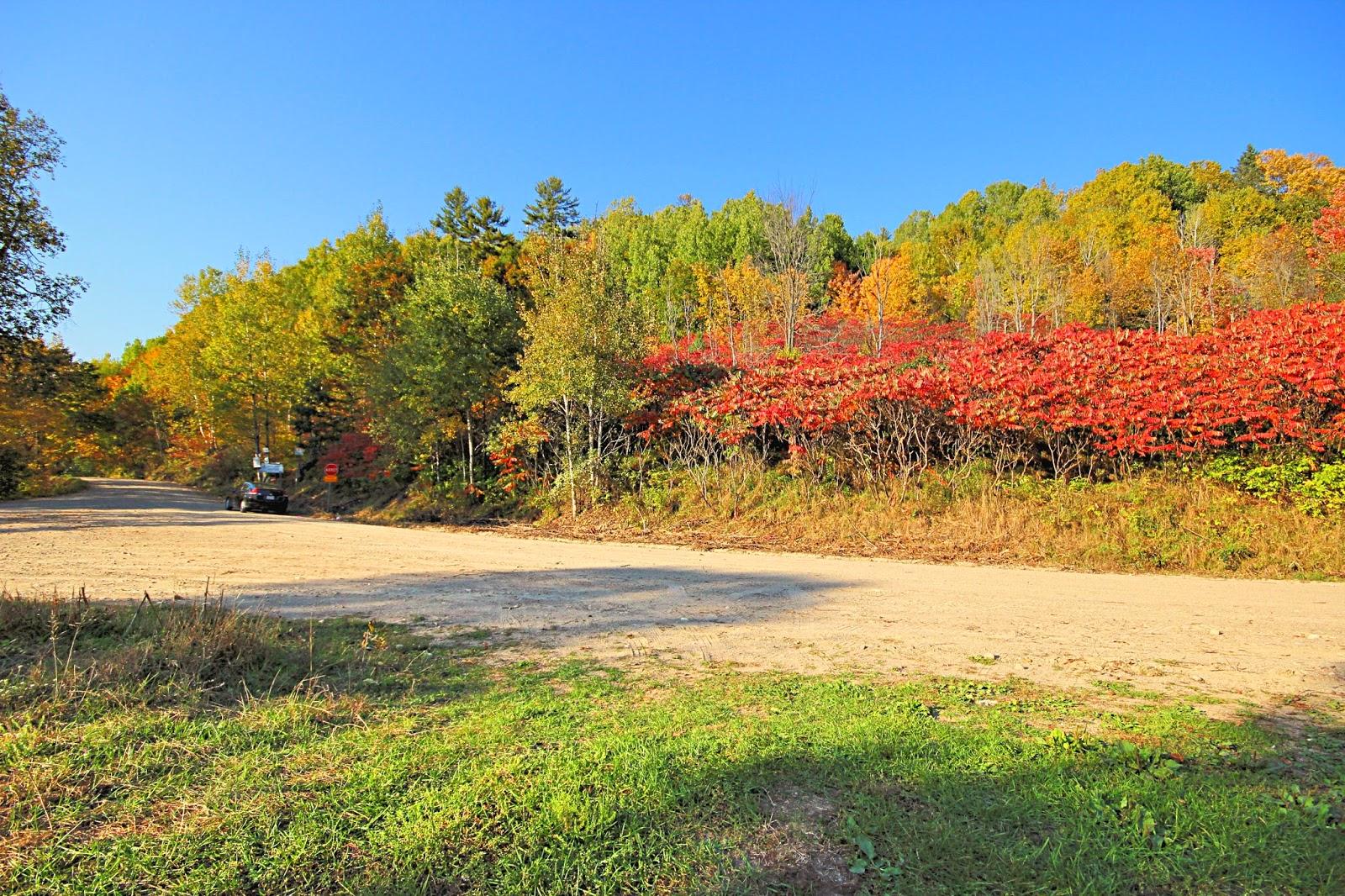 Terrains à vendre à Waltham (Pontiac)