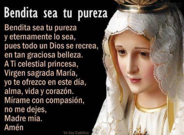 ORACIÓN BENDITA SEA TU PUREZA