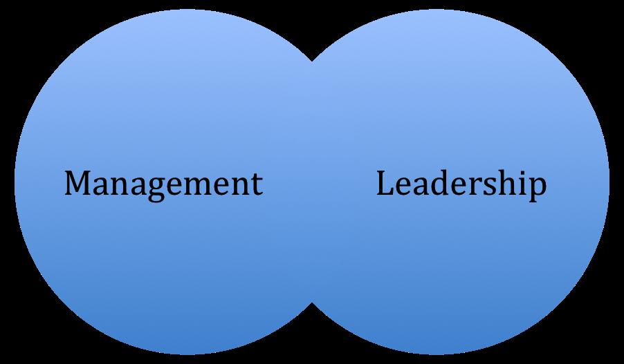 management v leadership essay