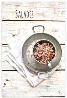 http://www.saveursvegetales.com/search/label/Salades