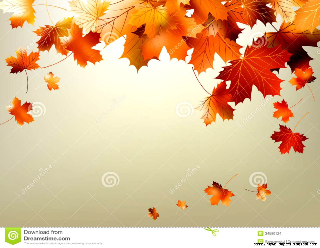 Colorful Autumn Leaves Falling EPS 10 Stock Images   Image 34590124