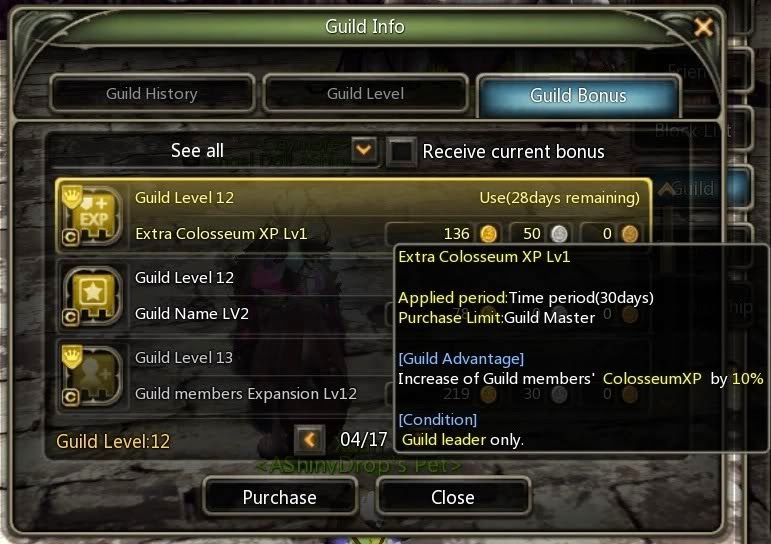 Dragon Nest Guild feature