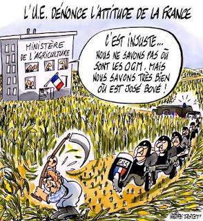 ue-bove-ogm OGM