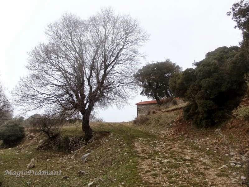 Εικόνες της φύσης
