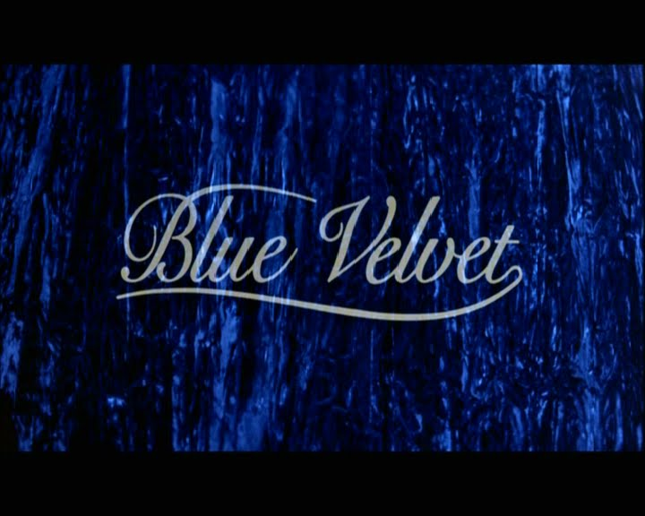 the exploration of things above and below the surface in david lynchs blue velvet David lynch's blue velvet is an exploration of things above and below the surface this surface is really a borderline between not only idyllic suburb.