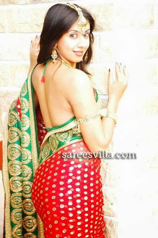 Something Backless saree blouses designs for women assured, that