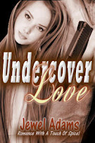 Undercover Love