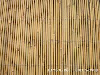 Bamboo Fence Rolls2