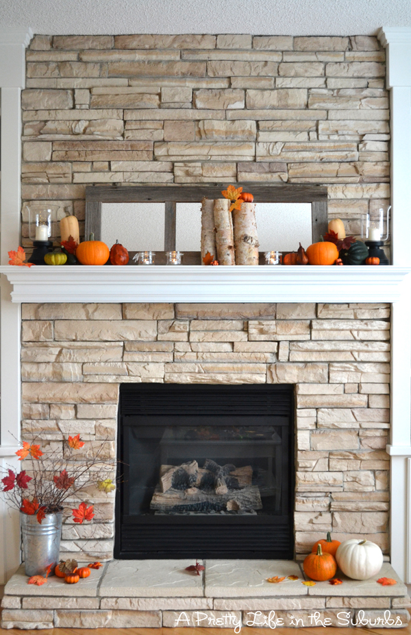 Fireplaces Styles And Trends Types Of Fireplace Surrounds New Home Trends Fireplaces