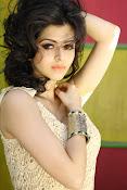 Vedhika glamorous photos gallery-thumbnail-7