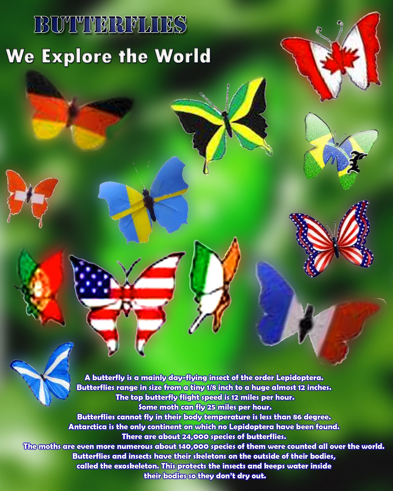 Poster design nature - Poster Version