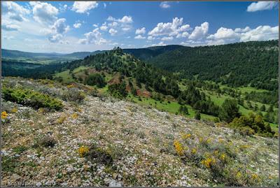 Valle Cabriel (cerca de El Vallecillo)