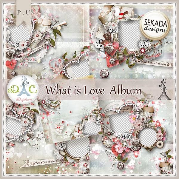 http://digital-crea.fr/shop/album-c-81_83/what-is-love-album-p-11525.html#.UvjecbRVXEA