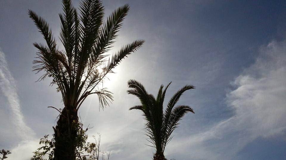 "<img src Vincci Nozha Beach.jpg"" lt="" http://dailytravelexperience.blogspot.com//"" />"