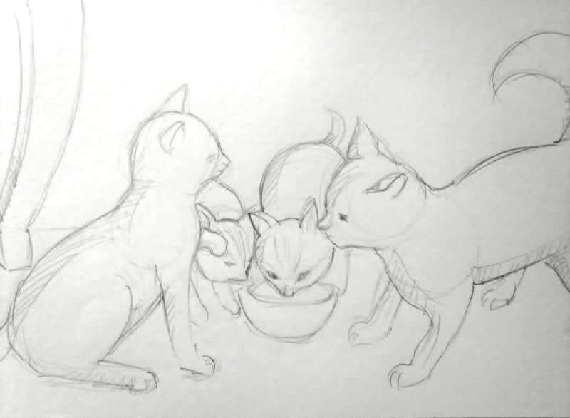 Panduan Melukis Kucing - Langkah Demi Langkah