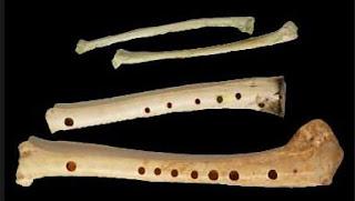 Huesos musicales