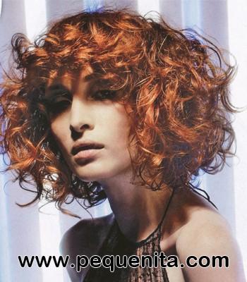 el pelo rizado necesita cuidados y diarios es la nica manera de no tener el cabello enmaraado y con apariencia de dejadez