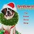 De Crăciun cu Beethoven ONLINE Subtitrat Gratis