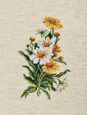 RTO, Ромашки на льняной ткани
