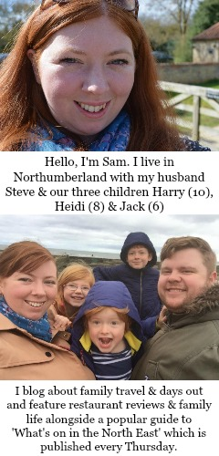 About North East Family Fun