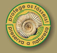 Os fósseis são parte da Natureza