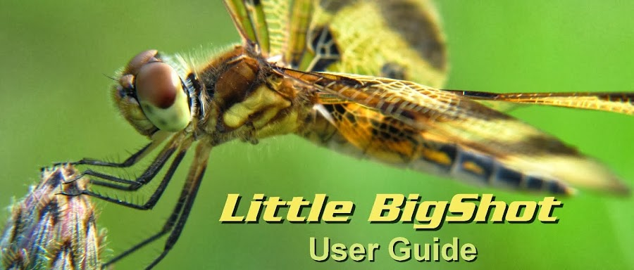 Little BigShot User Guide