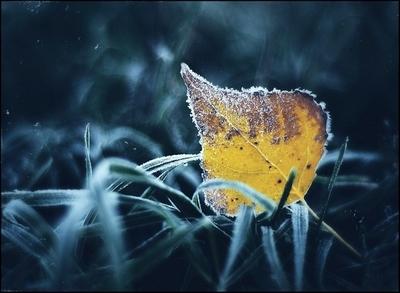 Photography by Nikolay Glazunov