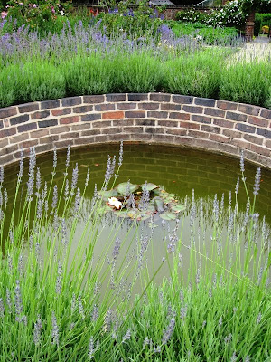 Pond at Winterbourne House