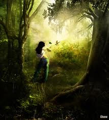 El bosque encantado (IV)