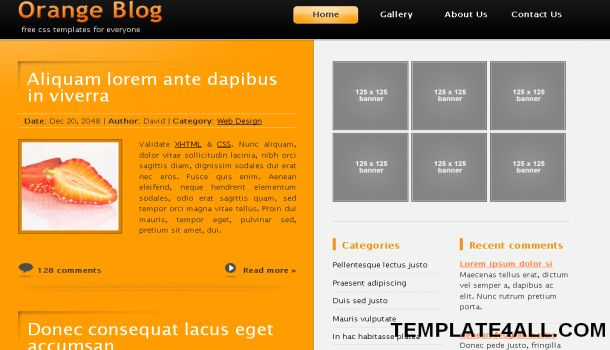 CSS Orange Black Business Website Template